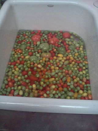 Tomatoes Soaking