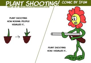 Plant Shooting